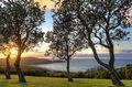 Sunrise over the Farm at Killalea