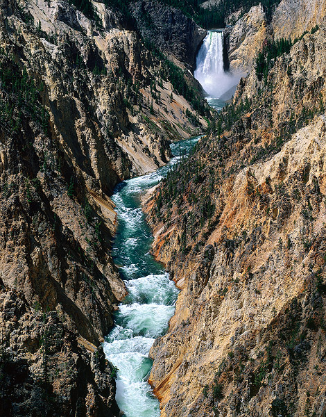 Yellowstone National Park, Lower Falls, Grand Canyon of the Yellowstone, Waterfall, photo