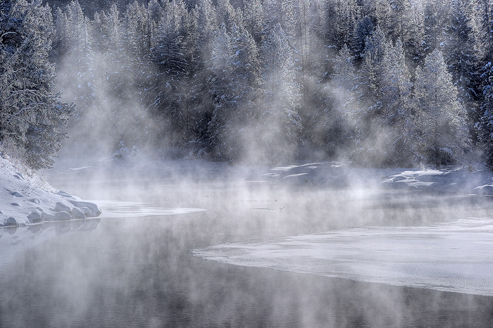 Frigid winter temperatures in Grand Teton National Park leave few areas of open water on the Snake River. Locations like this...